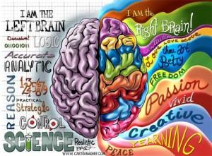 Hemisferios Cerebrales1